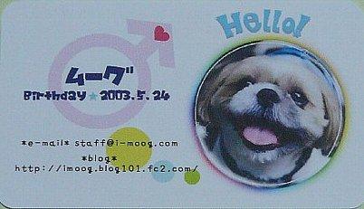 card_20081226_4