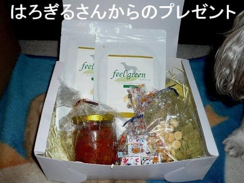 present_20081226_4
