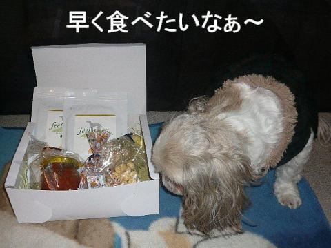 love_20081226_1