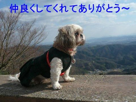 love_20081228_2