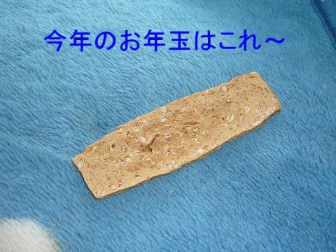 otoshidama_20090102_1