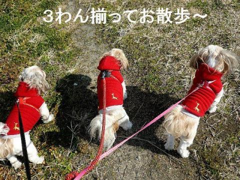 oyako_20090104_2