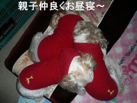 oyako_20090104_3