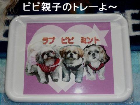 present_20090110_2