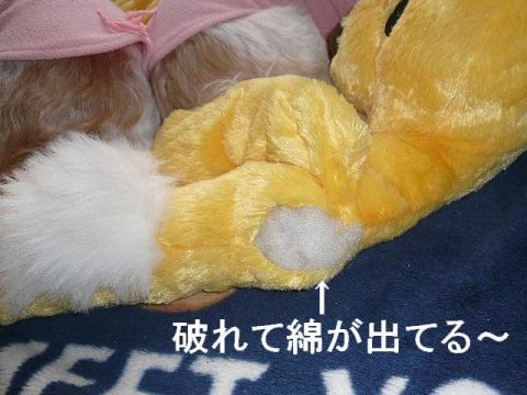 nebukuro_20090112_1