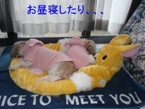lovemint_20090112_3