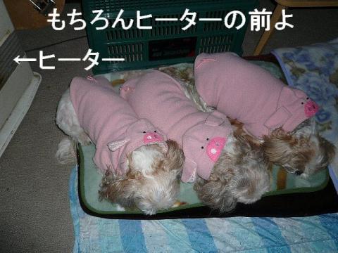 oyako_20090118_7