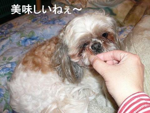 love_20090131_2
