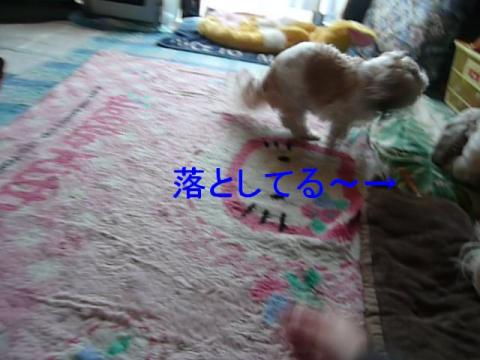 mint_20090209_3
