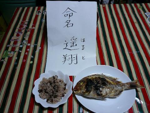 meimei_20090207_1