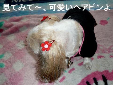 mint_20090211_11