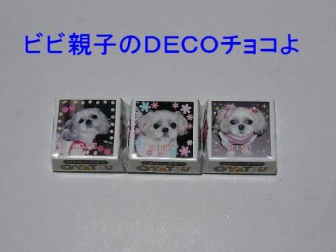 choco_20090216_1