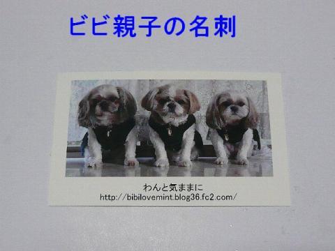 meisi_20090216_1