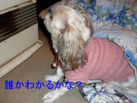 mint_20090225_2