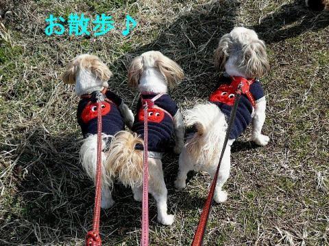 oyako_20090222_1