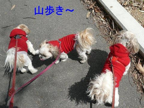 oyako_20090302_1