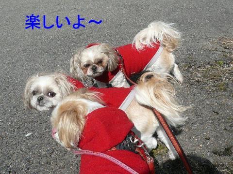 oyako_20090302_2