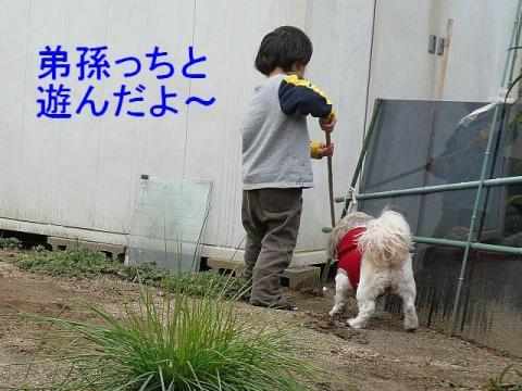 love_20090304_4
