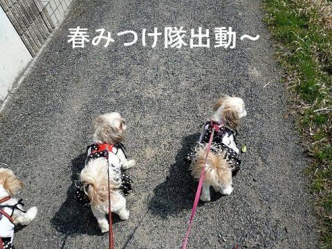oyako_20090309_3