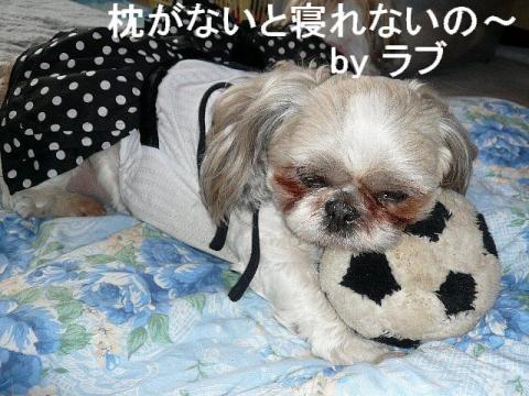 love_20090311_3