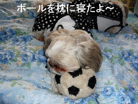 love_20090311_2