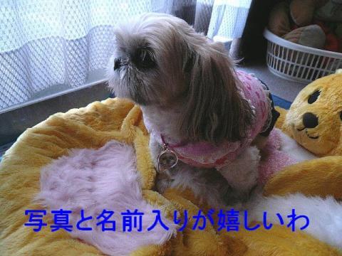 mint_20090316_3