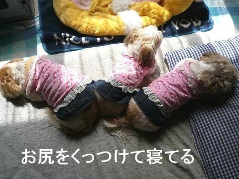 oyako_20090322_2