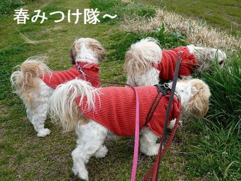 oyako_20090323_1