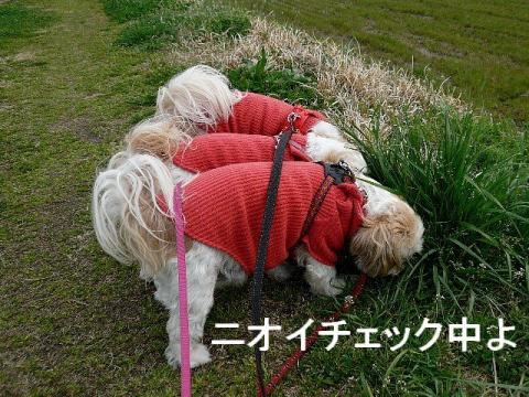 oyako_20090323_2