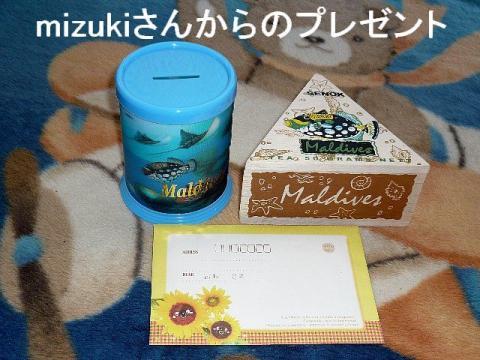 present_20090330_1