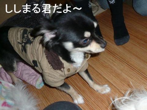 wanwan_20090410_2