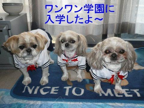 oyako_20090407_1