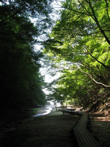20090925-03.jpg
