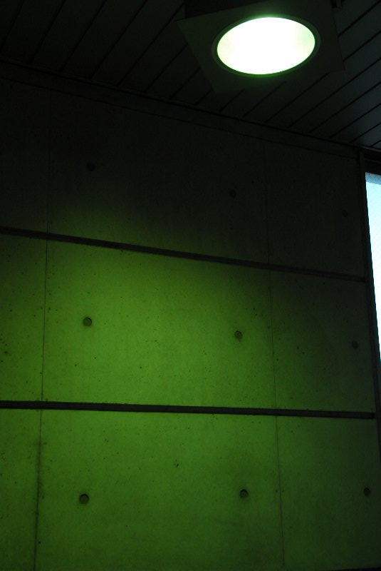 20080927-227936.jpg