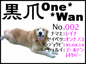 20051125171218.png