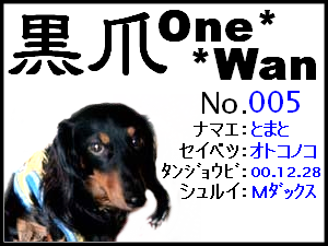 20051125173031.png