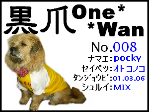 20051125173903.png