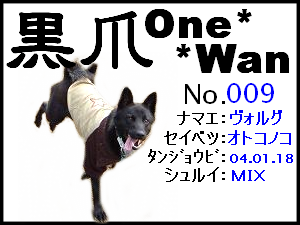 20051125173911.png