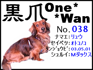 20060120232303.png