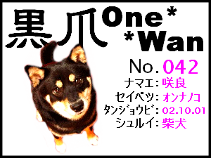 20060228174518.png