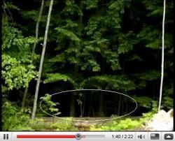 YouTubeより、「ダドリータウンの森の影のような幽霊」