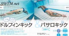 swimnet1.jpg