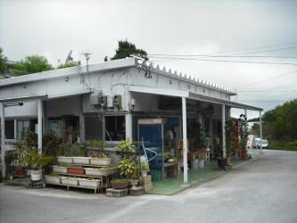 DSCF4244.jpg