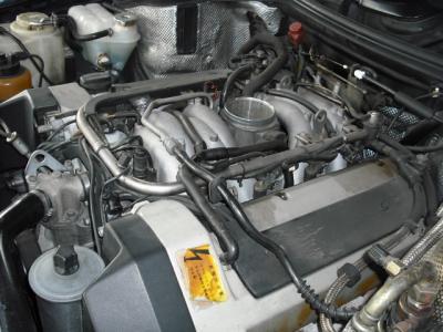 DSCF4635.jpg