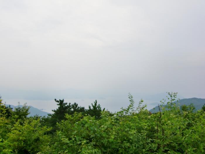 2010 0813 6