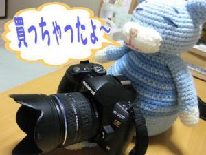 image08132.jpg