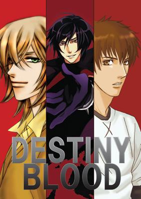 destiny-b2-top.jpg