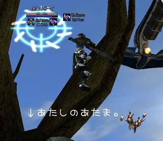 木登りボーイあらわる