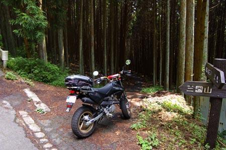 七越峠から下る林道