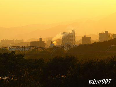 県立相模三川公園081004 039s2a